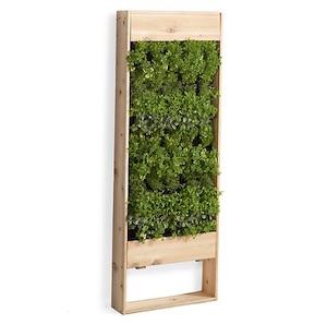 Cadre en bois végétal et mural