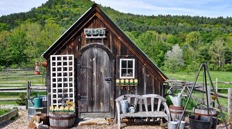 treilli bois sur une maison avec une plante grimpante